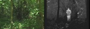 Termokamera pro noční vidění vidí částečně i skrze hustý porost